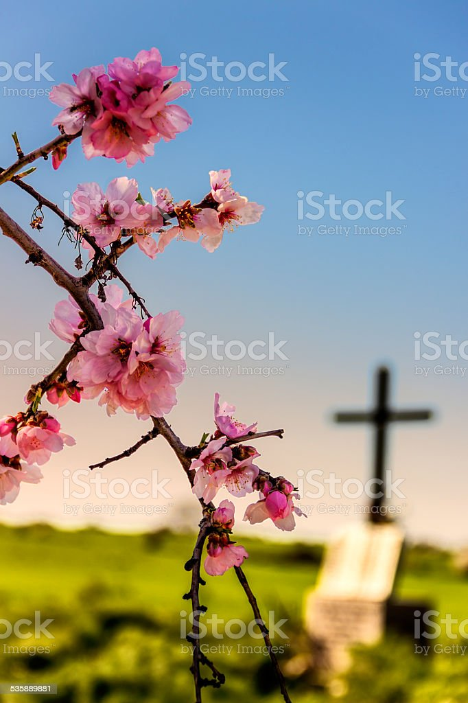 EASTER.Death and rebirth: the tomb and almond flowers(Apulia)-ITALY- stock photo