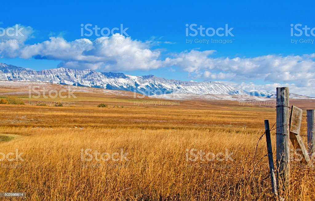 Eastern foothils grassland and late summer sky with puffy clouds stock photo