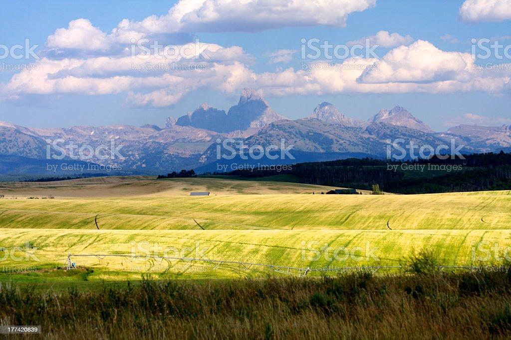 Idaho orientale - Foto stock royalty-free di Agricoltura