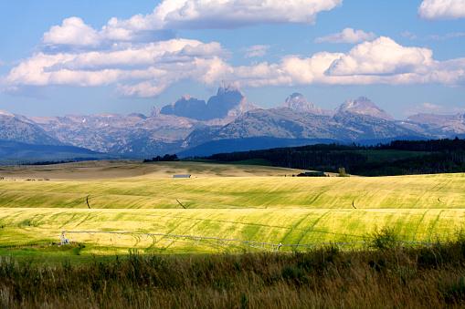 Idaho Orientale - Fotografie stock e altre immagini di Agricoltura
