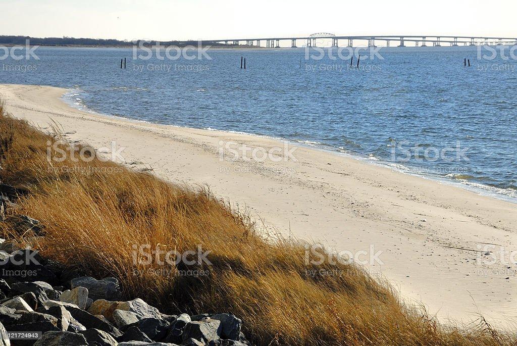 Eastern Shore royalty-free stock photo