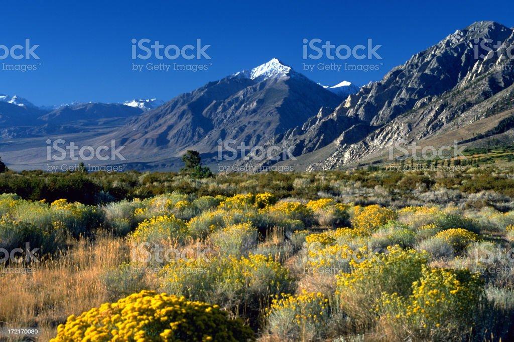 Eastern Sierras royalty-free stock photo