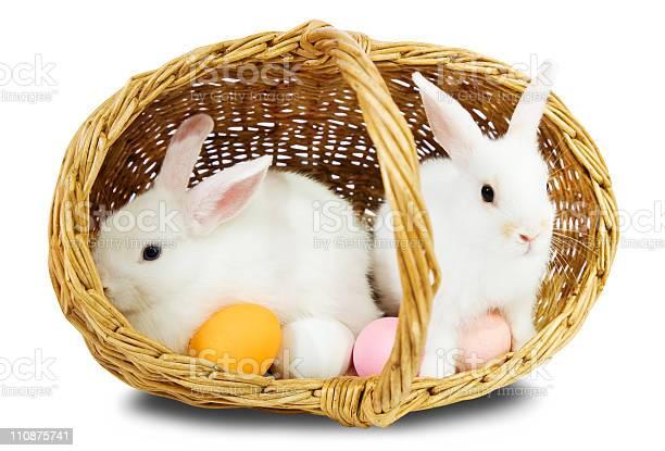 Easterrabbits in basket with eggs picture id110875741?b=1&k=6&m=110875741&s=612x612&h=ewliubuixn5t1isrecmn6xarqc061knbqvpyudil6vg=