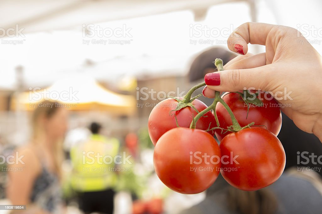 Eat and Drink:  Woman selecting tomatoes in open air market. stock photo