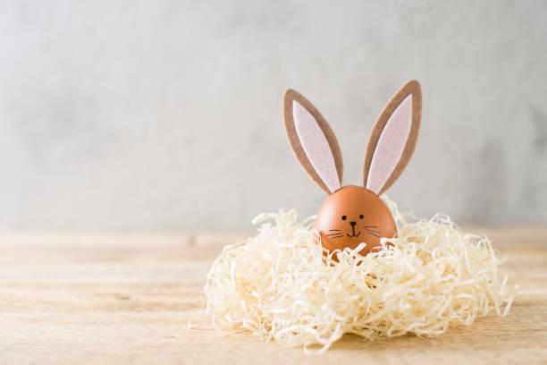 eatesr bunny in een nest op grijs textuur, pasen thema - chicken bird in box stockfoto's en -beelden