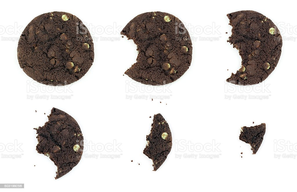 Eating a Chocolate Cookie stock photo