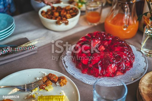 istock Eating Red Berry Jelly for Thanksgiving Dinner 845988528