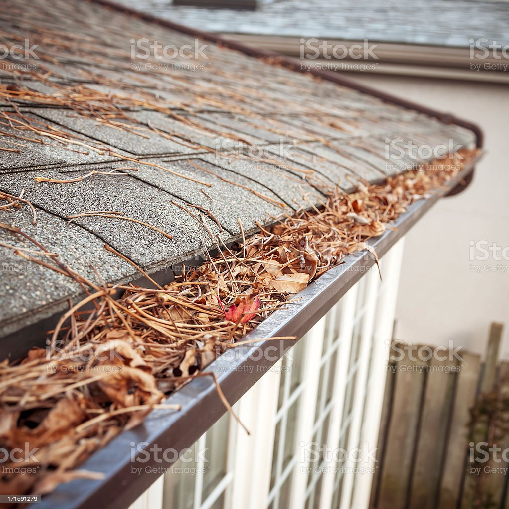 Eavestrough clogged with leaves - V stock photo