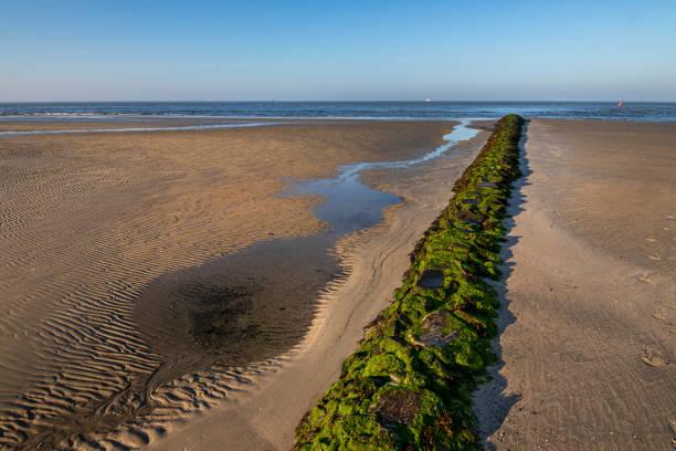 ebb sand beach in norderney, travel germany wattenmeer - urlaub norderney stock-fotos und bilder