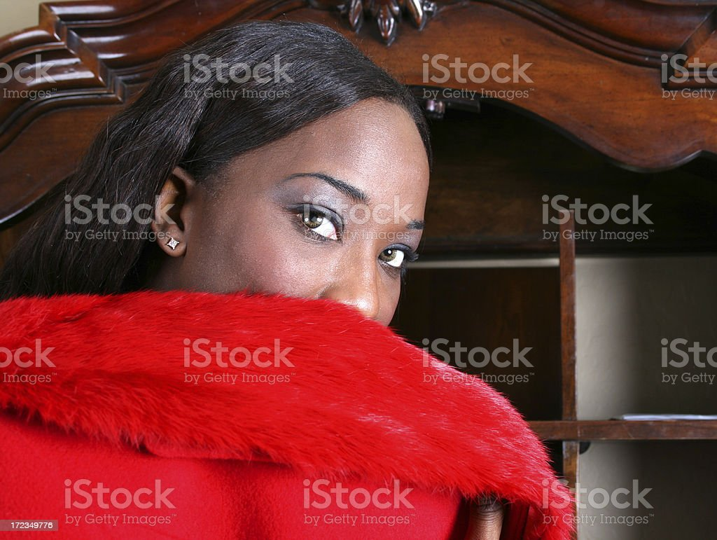 Ebony Beauty royalty-free stock photo