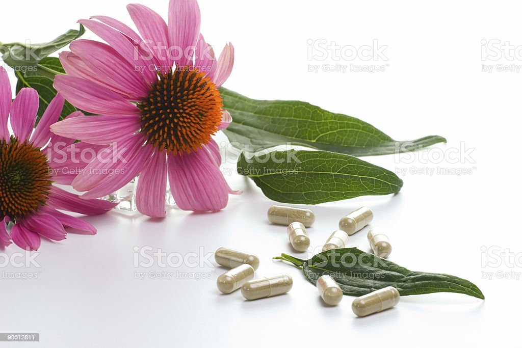 Echinacea capsules stock photo
