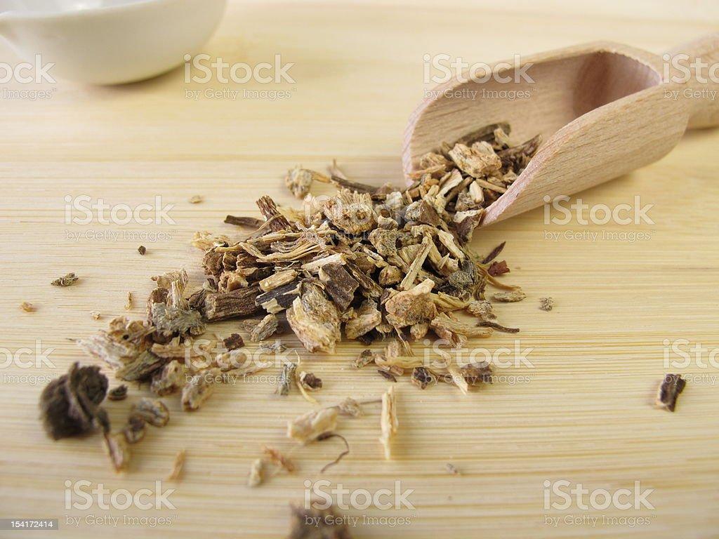 Echinacea root, Echinaceae angustifoliae radix stock photo