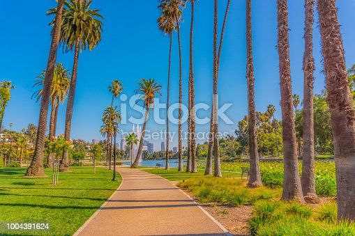 Echo Park, path in Los Angeles, Palm trees with lake, Los Angeles park, California lifestyle