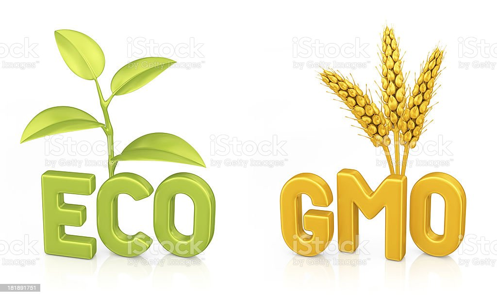 eco and gmo stock photo