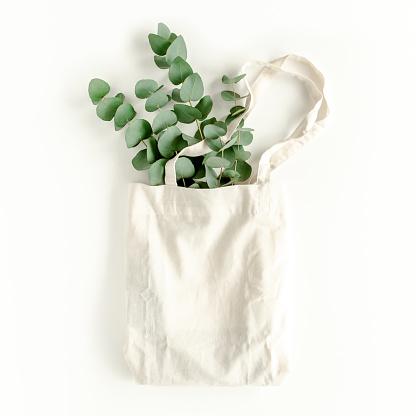 Eco bag with eucalyptus on white background
