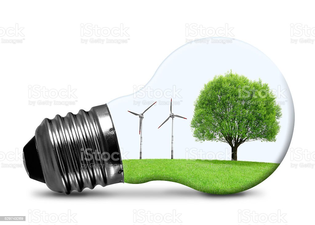 Eco bulb stock photo