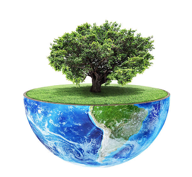 eco concept. - environmental consciousness stock pictures, royalty-free photos & images