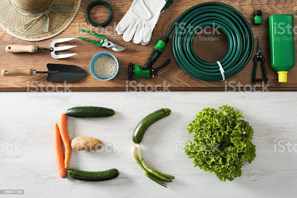 Eco concept stock photo