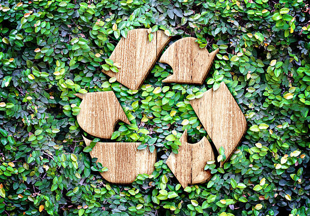eco concept :wood texture recycle icon on green leaves wall - recycling symbol stock photos and pictures