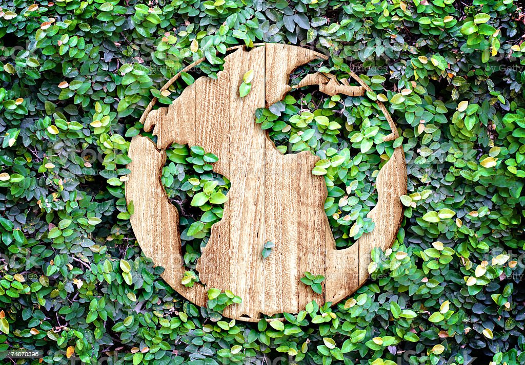 Eco concept :Wood texture world icon on green leaves wall stock photo