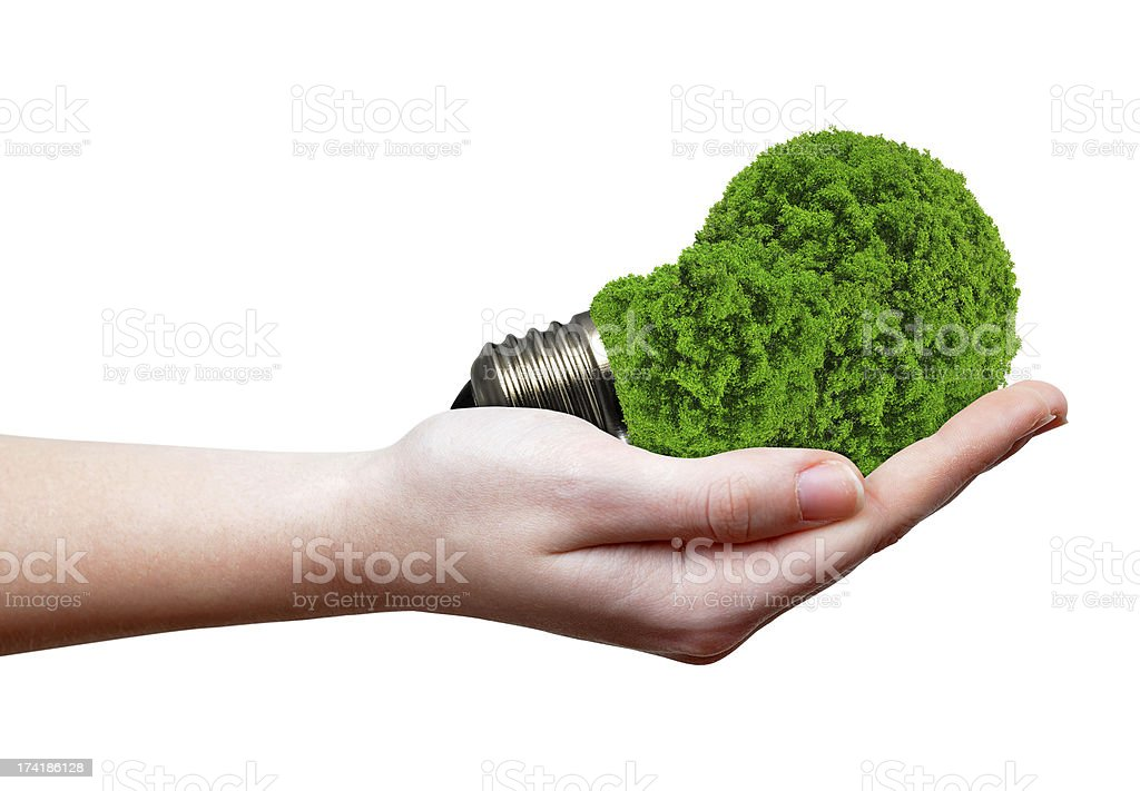eco energy bulb in hand royalty-free stock photo