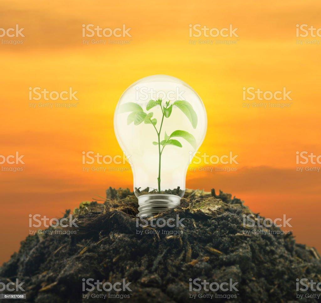 Eco energy concept stock photo