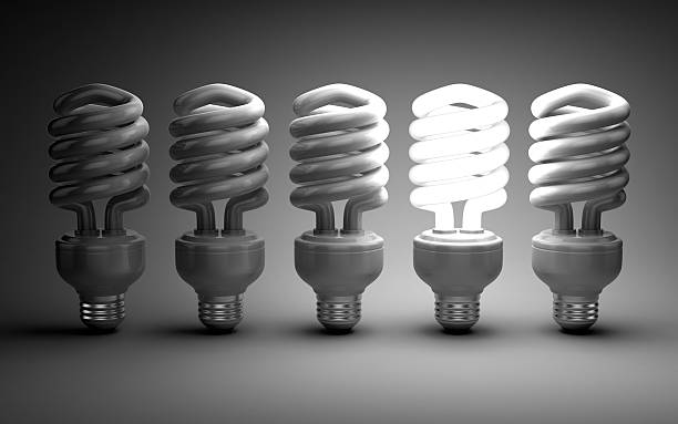 Eco energy saving light bulb concept - Photo