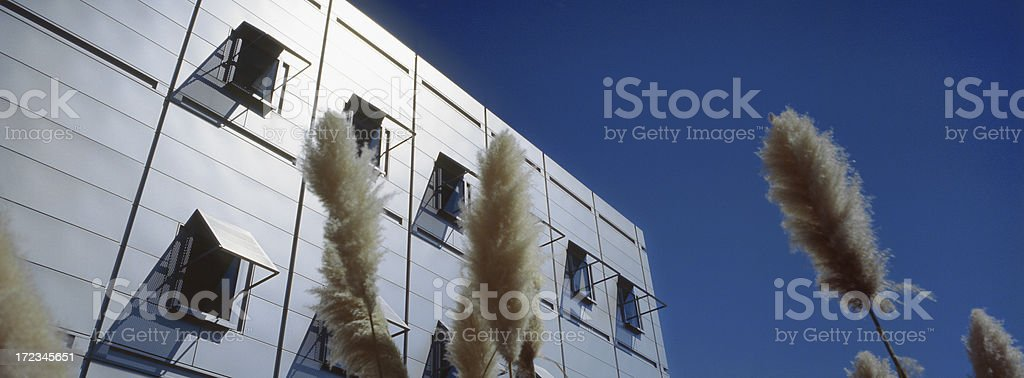 Eco Friendly Building 1 royalty-free stock photo
