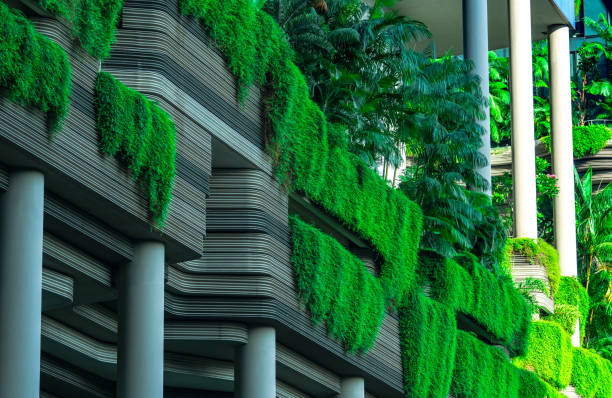 singapore-may 20, 2019 : eco friendly building with vertical garden in modern city. green tree forest and ivy on facade on sustainable building. energy saving architecture with vertical garden. - ivy corporate building imagens e fotografias de stock