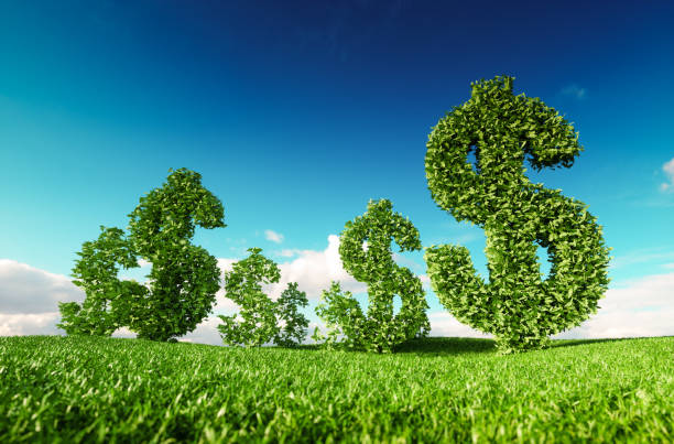 eco friendly business, green profit, growing money and  sustainable economy concept. 3d rendering of green dollar icon on fresh spring meadow with blue sky in background. - символ доллара стоковые фото и изображения