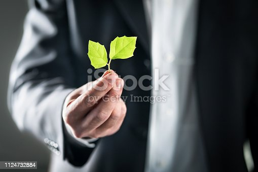 Eco friendly environmental lawyer or business man. Sustainable development, climate change, ecology and carbon footprint concept. Environment, energy or conservation laws. Global pollution crisis.
