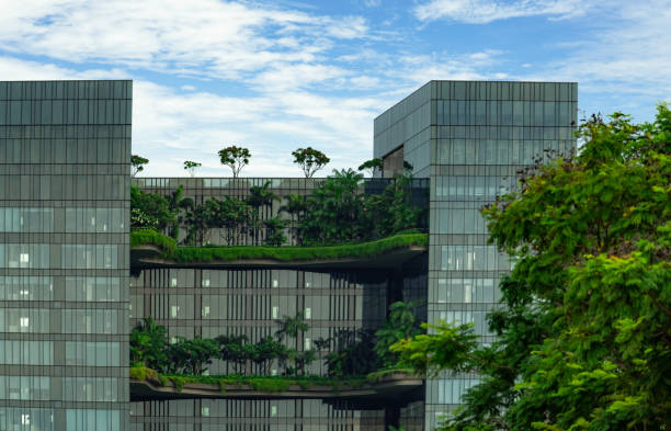 eco friendly glass building with vertical garden in modern city. green plant and tree forest and ivy on facade on sustainable building. energy saving architecture with vertical garden.  modern design. - ivy corporate building imagens e fotografias de stock