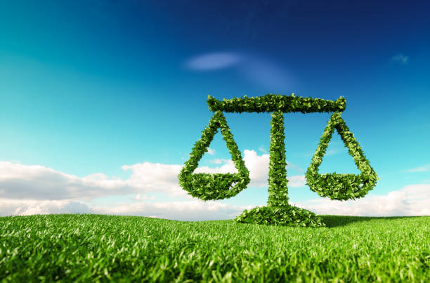 Eco friendly law, politics and eco balance concept. 3d rendering of scale icon on fresh spring meadow with blue sky in background. Eco friendly law, politics and eco balance concept. 3d rendering of scale icon on fresh spring meadow with blue sky in background. environment stock pictures, royalty-free photos & images