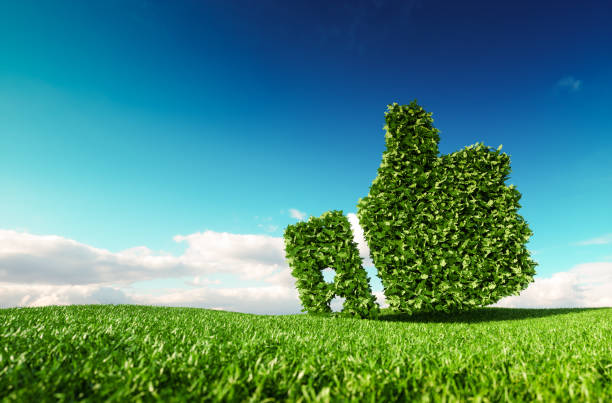 Umweltfreundlich, kein Abfall, keine Umweltverschmutzung, Klima-Abkommen Steuerungskonzept. 3D-Rendering Daumen hoch Symbol auf frische Frühlingswiese mit blauen Himmel im Hintergrund. – Foto