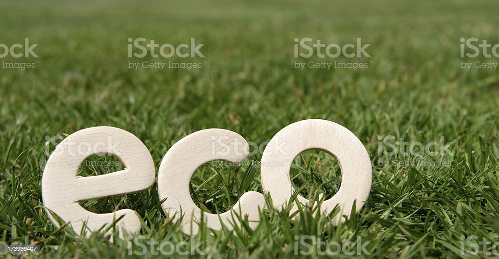 Eco friendly royalty-free stock photo