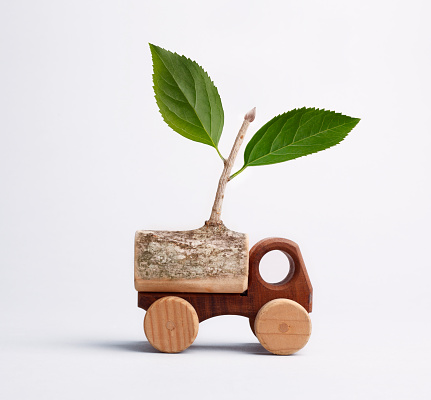 Little wooden truck with leafy branch.