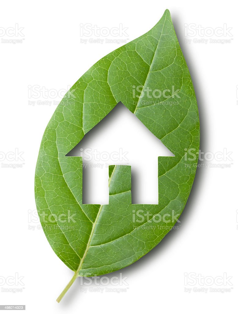 Eco green home stock photo