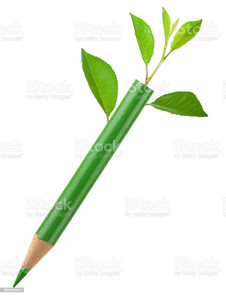 Eco green pencil with leafs stock photo
