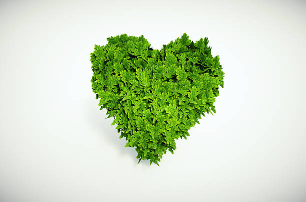 eco heart - recycling heart bildbanksfoton och bilder