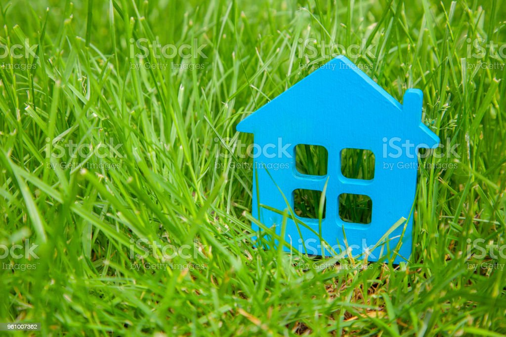 Eco house in nature. Symbol of house blue on green grass in summer....