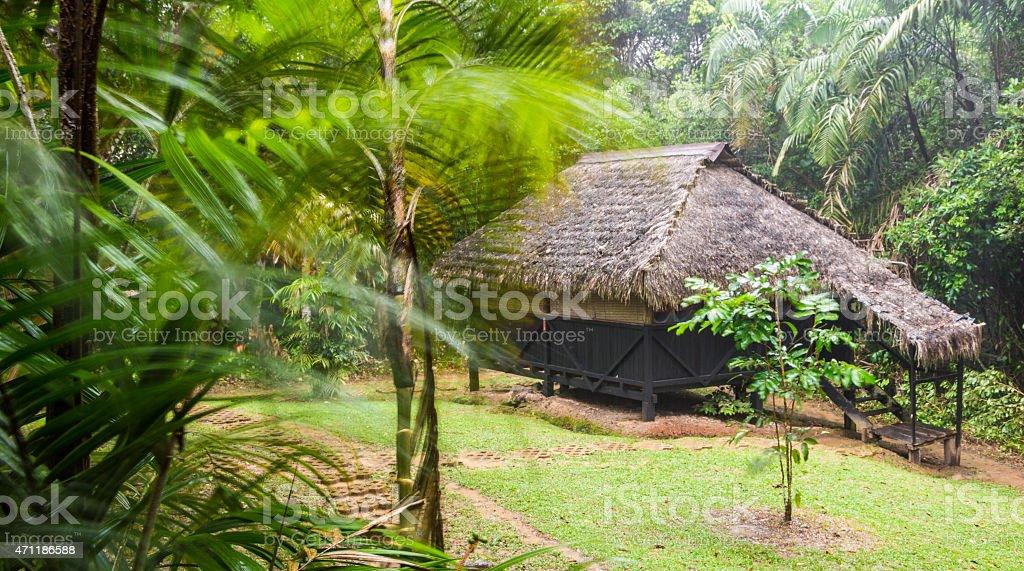 Eco lodge in Cuyabeno Wildlife Reserve during rain. stock photo