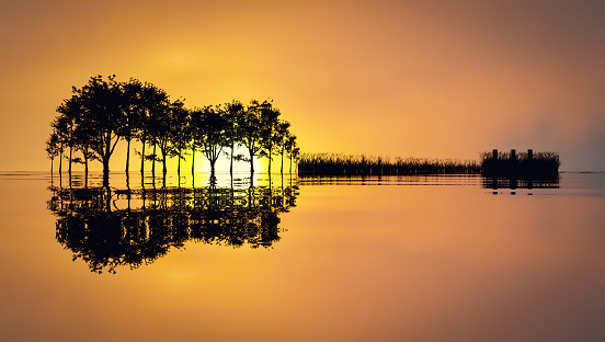 Silhouette of trees, grass and dock making the shape of a guitar reflected on a lake. Music in Nature, 3D illustration
