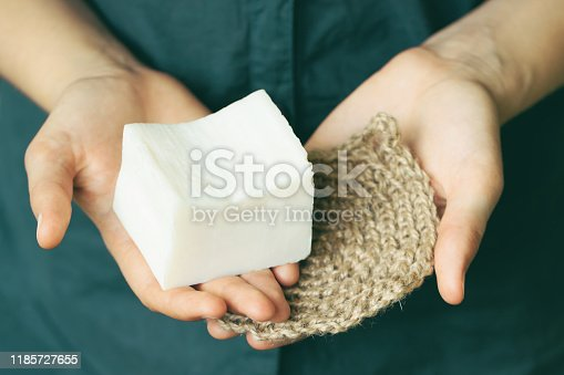 1169442288 istock photo Eco-friendly cleaning kit in the woman's hand 1185727655