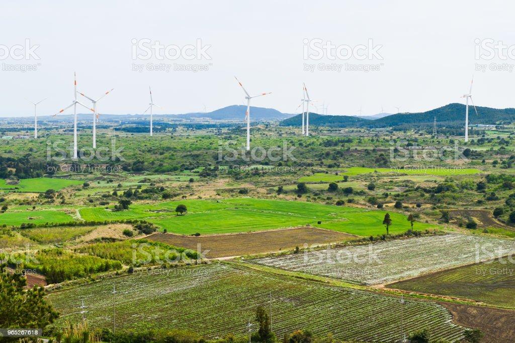 Eco-friendly wind power generation in the wide field. zbiór zdjęć royalty-free