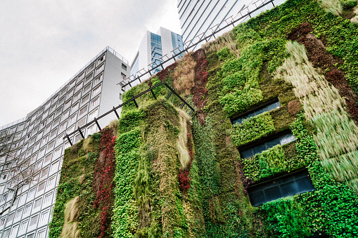 Ecologic building Architecture in São Paulo, Brazil