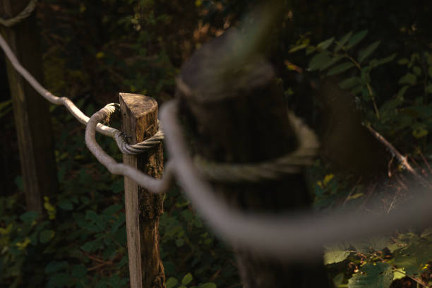 Ecologic fence made with rope and wooden posts in a forest. stock photo