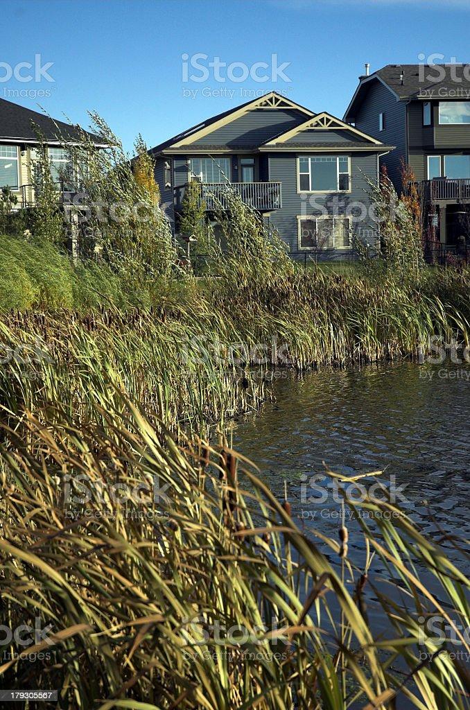 ecological development royalty-free stock photo