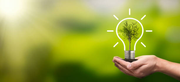 Ecological friendly and sustainable environment stock photo