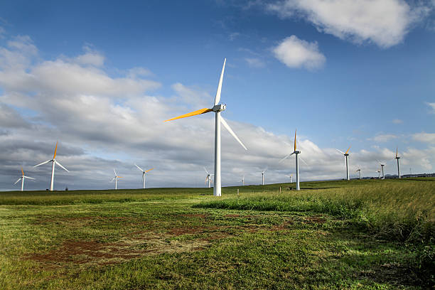 Ecological wind turbines Ecological wind turbines operating in a country field neicebird stock pictures, royalty-free photos & images