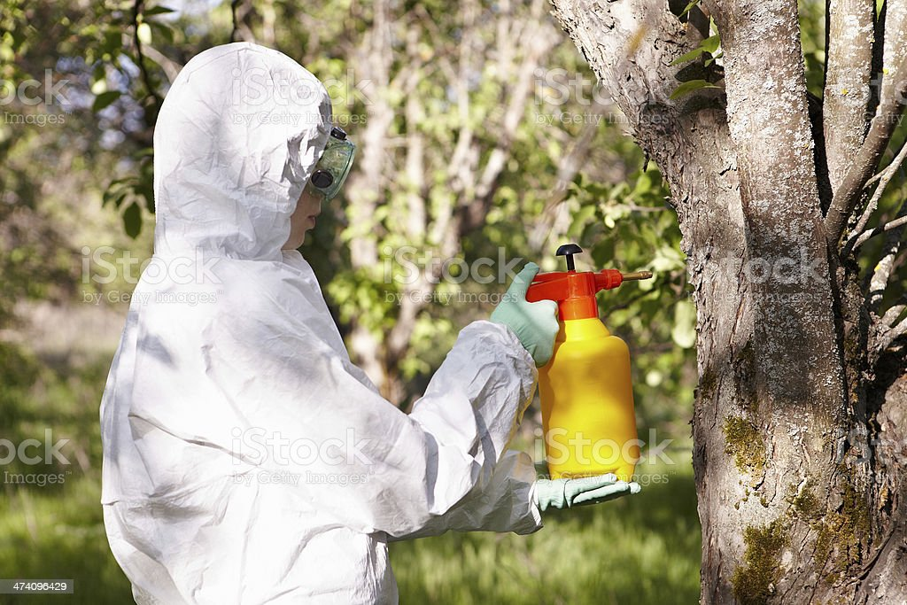 Ecology and environmental pollution. Insecticide. stock photo